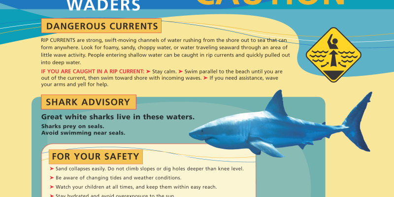 be cautious of potential rip currents and aware that there are sharks in this area
